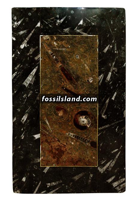 Table basse de caf en marbre fossiles marron au centre et - Table en marbre rectangulaire ...